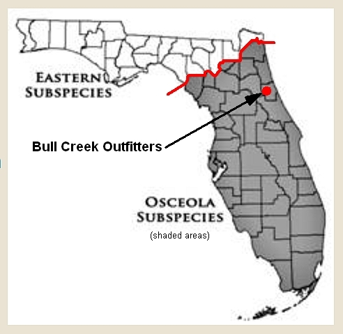 Florida Osceola & Eastern Sub-Species Map 2